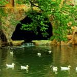 Betreutes Wohnen mit eigenem Zoo in Bulgarien