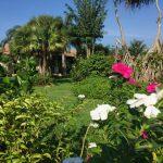 Seniorenresidenz Garten in Thailand