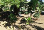 Betreutes Wohnen mit Palmen im Garten in Spanien